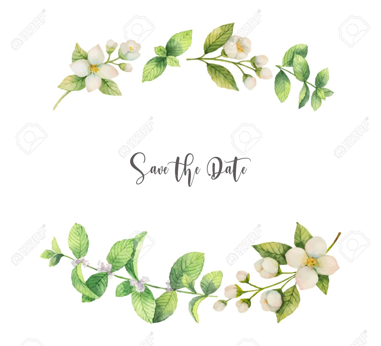 Watercolor vector wreath of flowers Jasmine and mint isolated on a white background. - 90217005