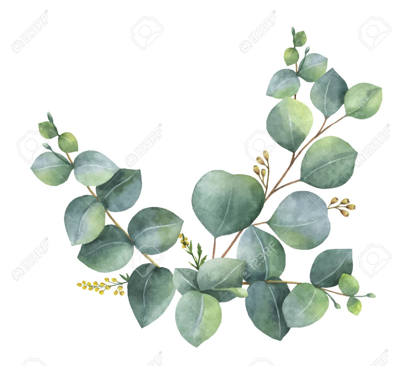 Watercolor vector wreath with green eucalyptus leaves and branches. Spring or summer flowers for invitation, wedding or greeting cards. - 90252676