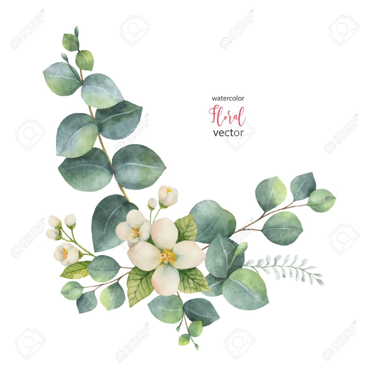 Watercolor vector wreath with green eucalyptus leaves and Jasmine. - 91104005