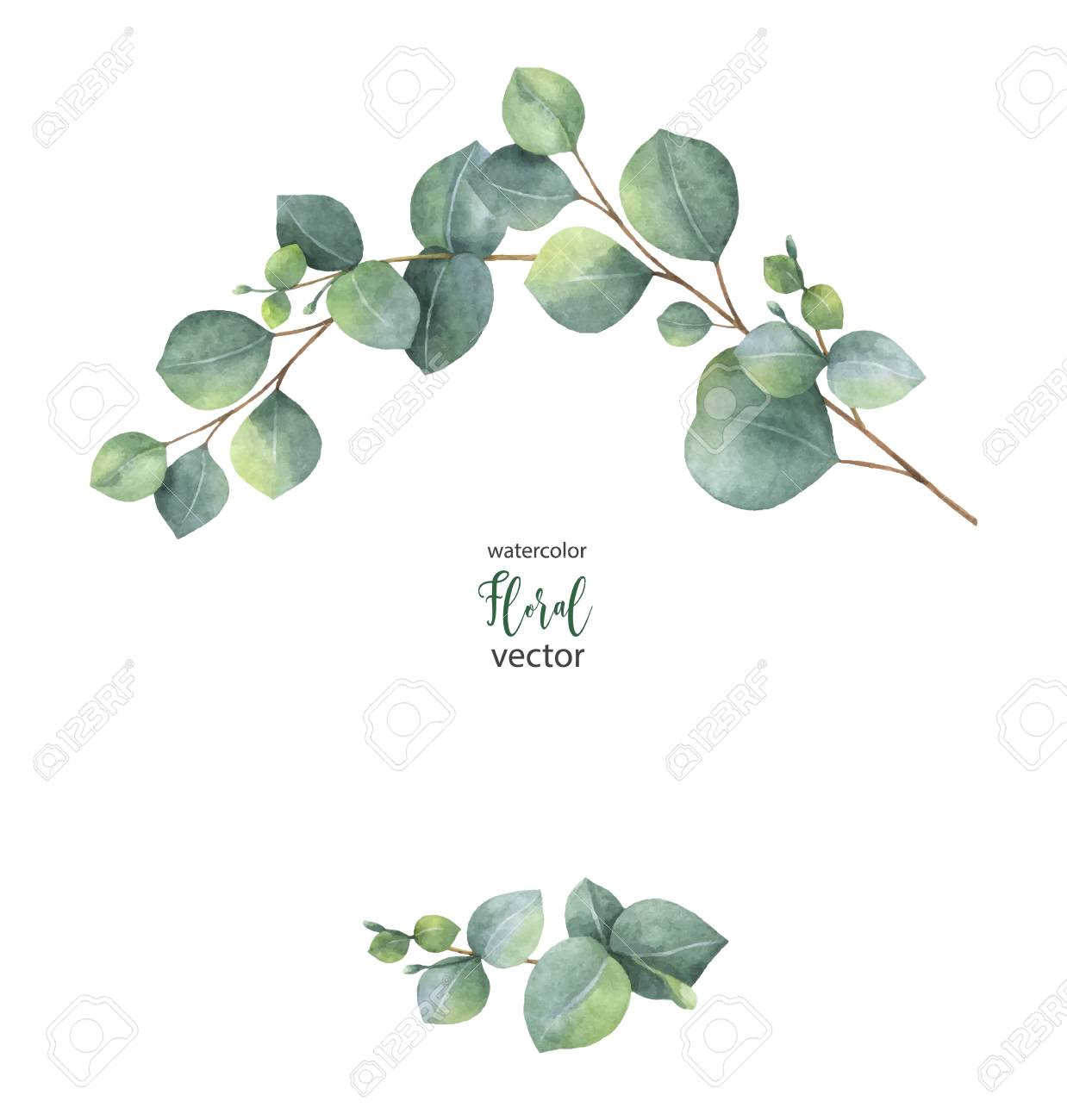 Watercolor vector wreath with green eucalyptus leaves and branches. - 91103500