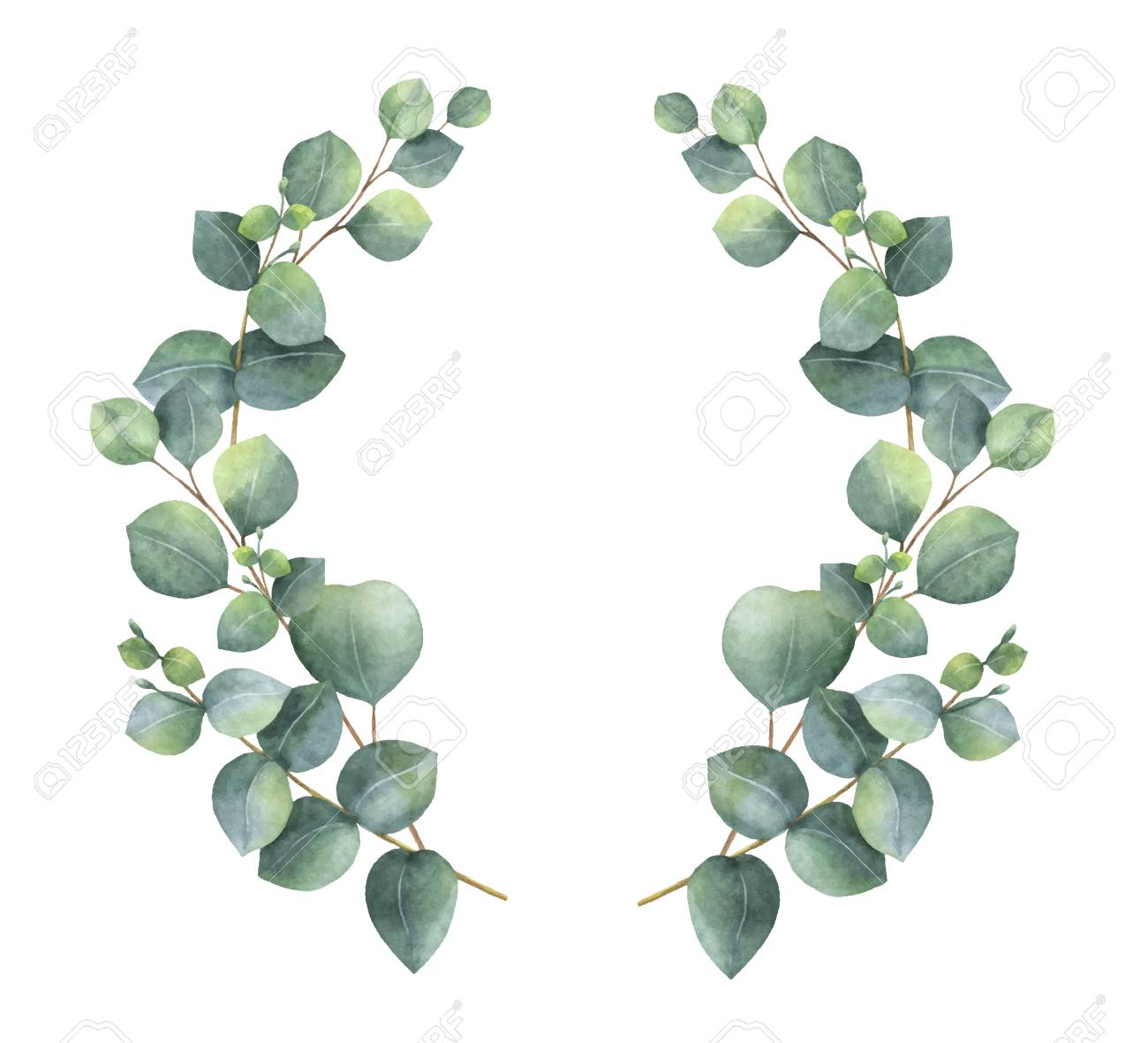 Watercolor vector wreath with silver dollar eucalyptus leaves and branches. Healing Herbs for cards, wedding invitation, awards, victories and success. Summer flowers with space for your text. - 92237719