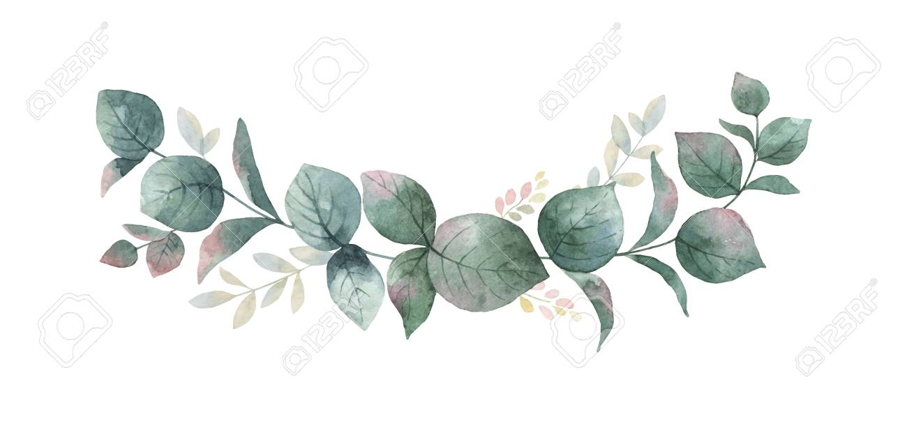 Watercolor vector wreath with green eucalyptus leaves and branches. - 92660762