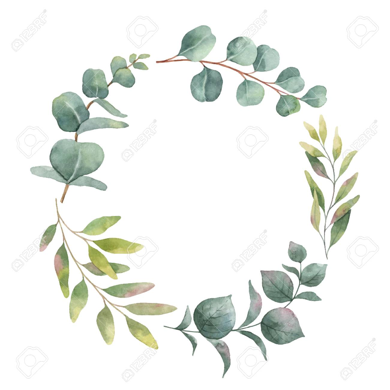 Watercolor vector wreath with green eucalyptus leaves and branches. Spring or summer flowers for invitation, wedding or greeting cards. - 92659346