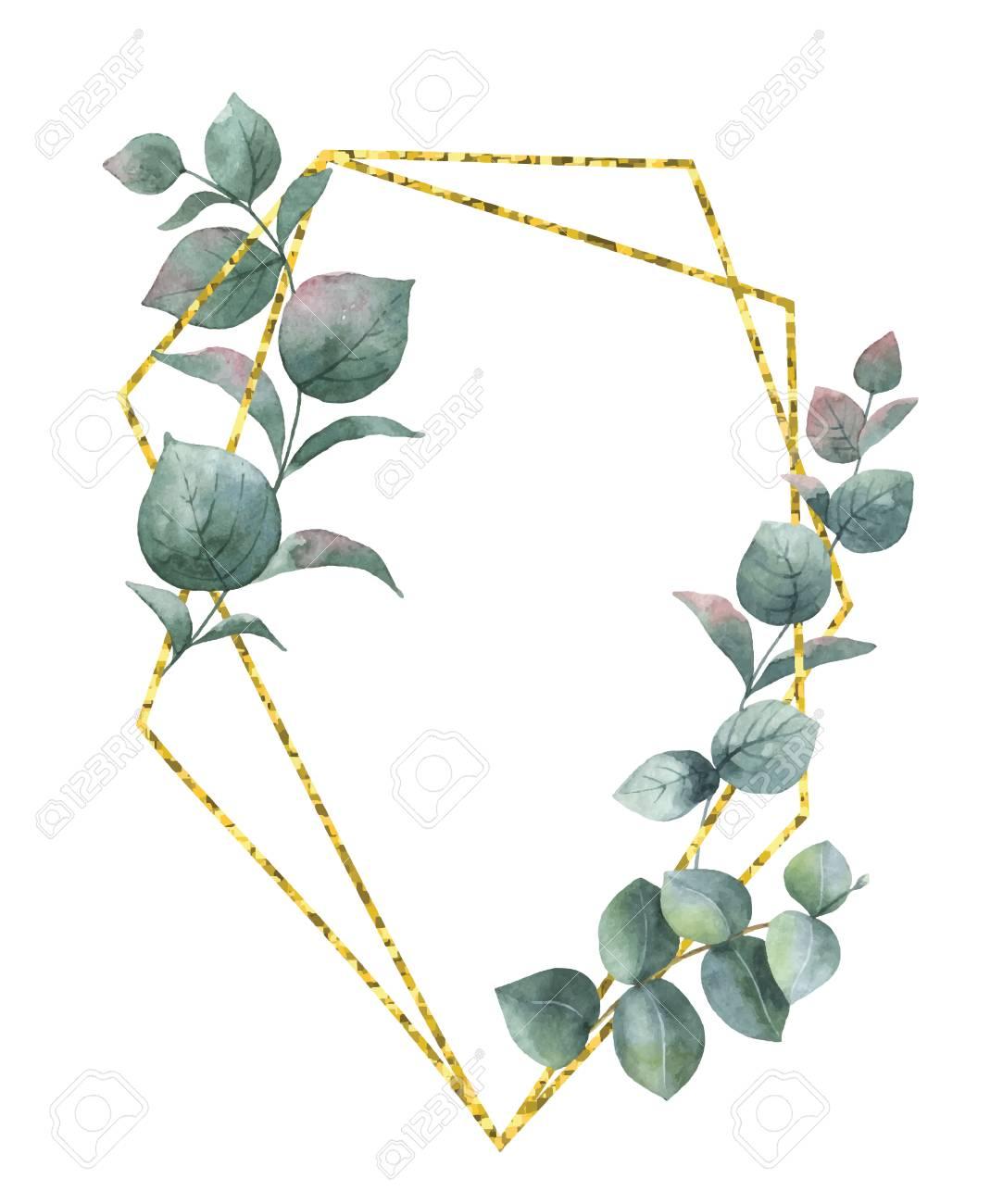 composition aquarelle des branches d'eucalyptus et cadre géométrique