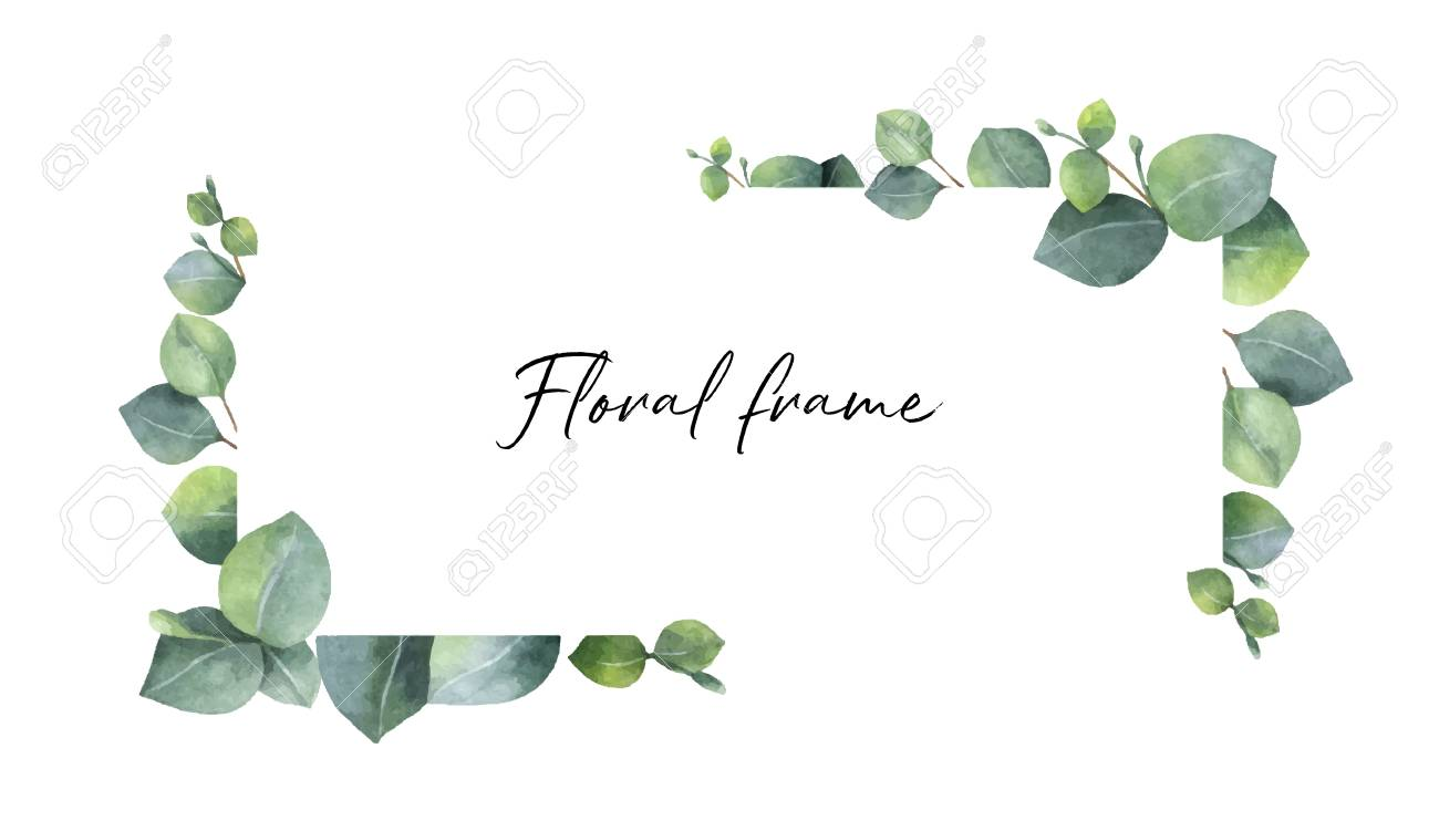 Watercolor vector wreath with green eucalyptus leaves and branches. Spring or summer flowers for invitation, wedding or greeting cards. - 93853146