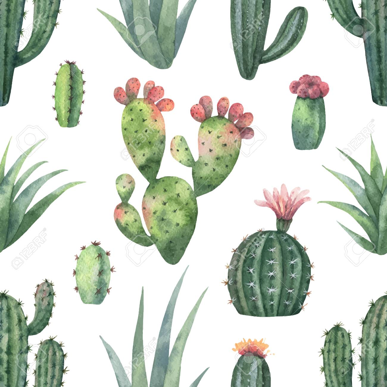 Watercolor Vector Seamless Pattern Of Cacti And Succulent Plants