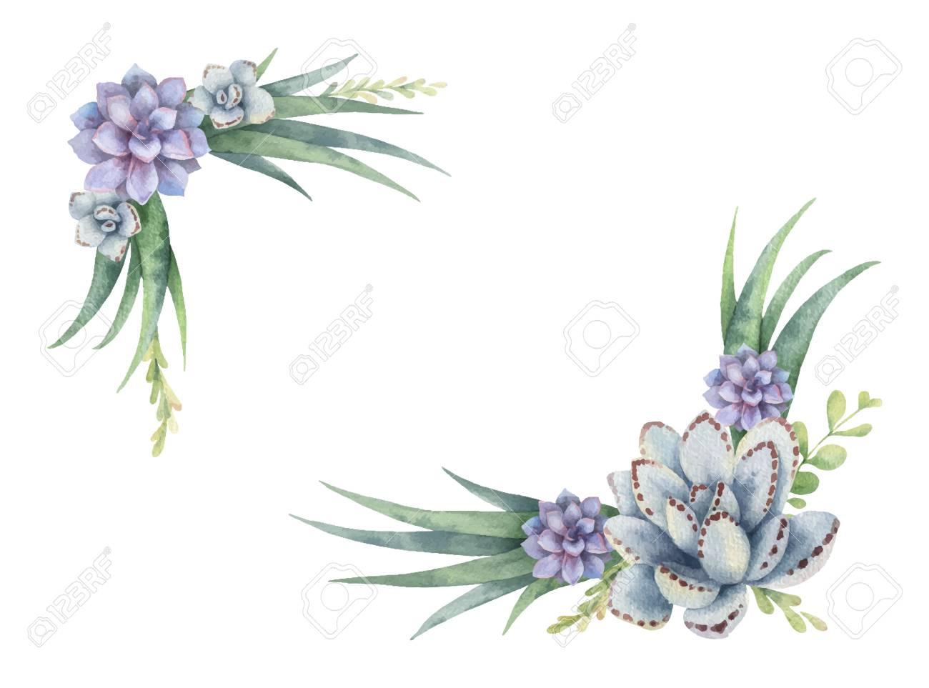 Watercolor Vector Wreath Of Cacti And Succulent Plants Isolated Royalty Free Cliparts Vectors And Stock Illustration Image 96317891