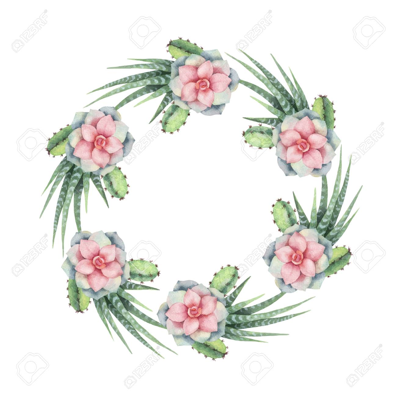 Watercolor Vector Wreath Of Cacti And Succulent Plants Isolated Royalty Free Cliparts Vectors And Stock Illustration Image 96327406