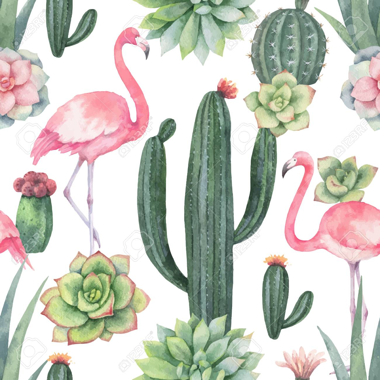 Watercolor vector seamless pattern of pink flamingo, cacti and succulent plants isolated on white background. - 100972990
