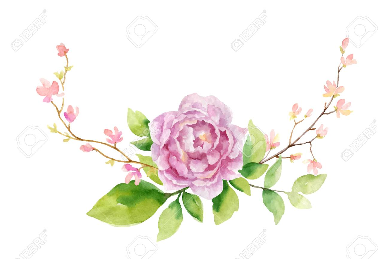 Watercolor vector hand painting illustration of peony flowers and green leaves. - 102796201