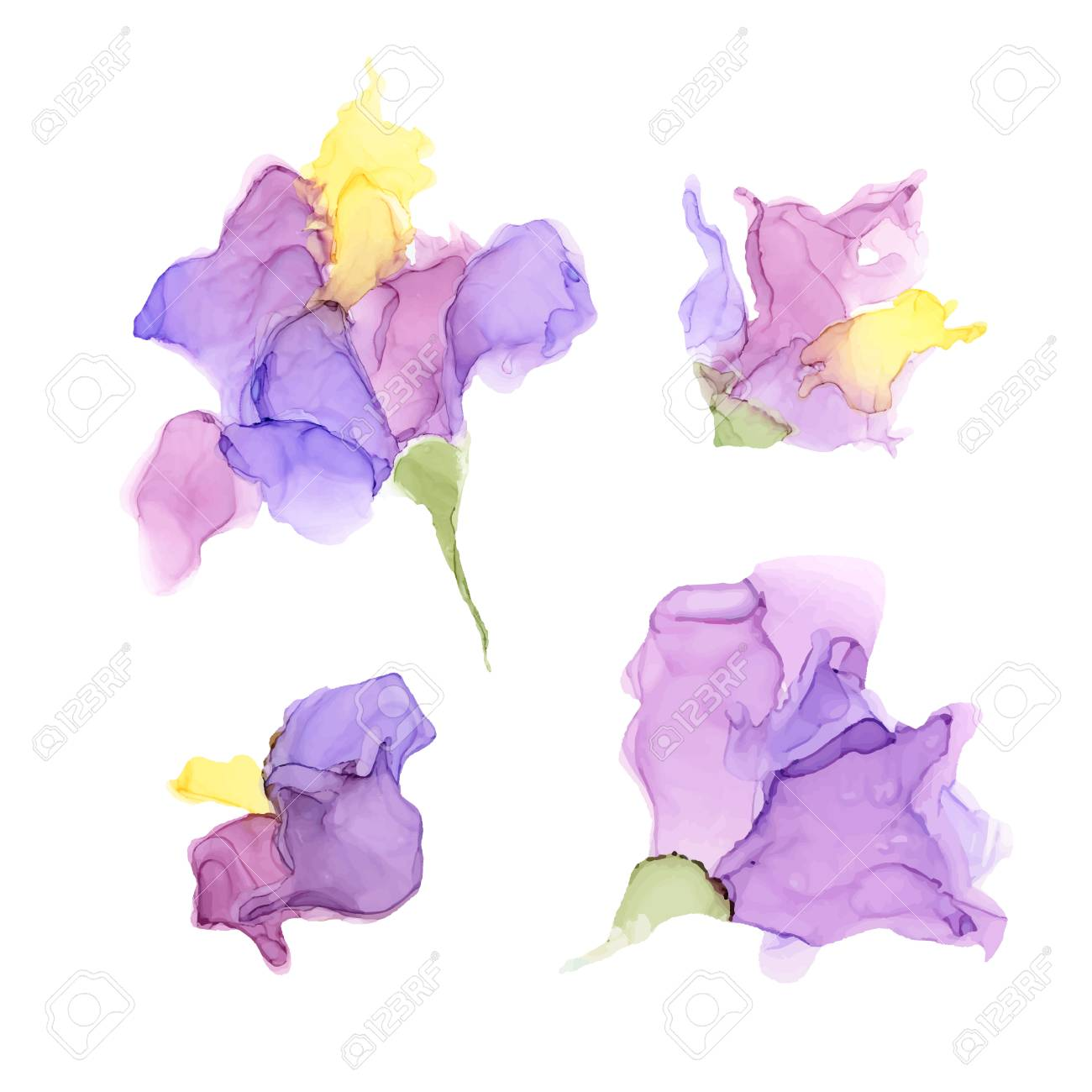 Abstract color alcohol ink flowers isolated on white background . Marble style. Hand painted vector illustration for your design. - 130047519