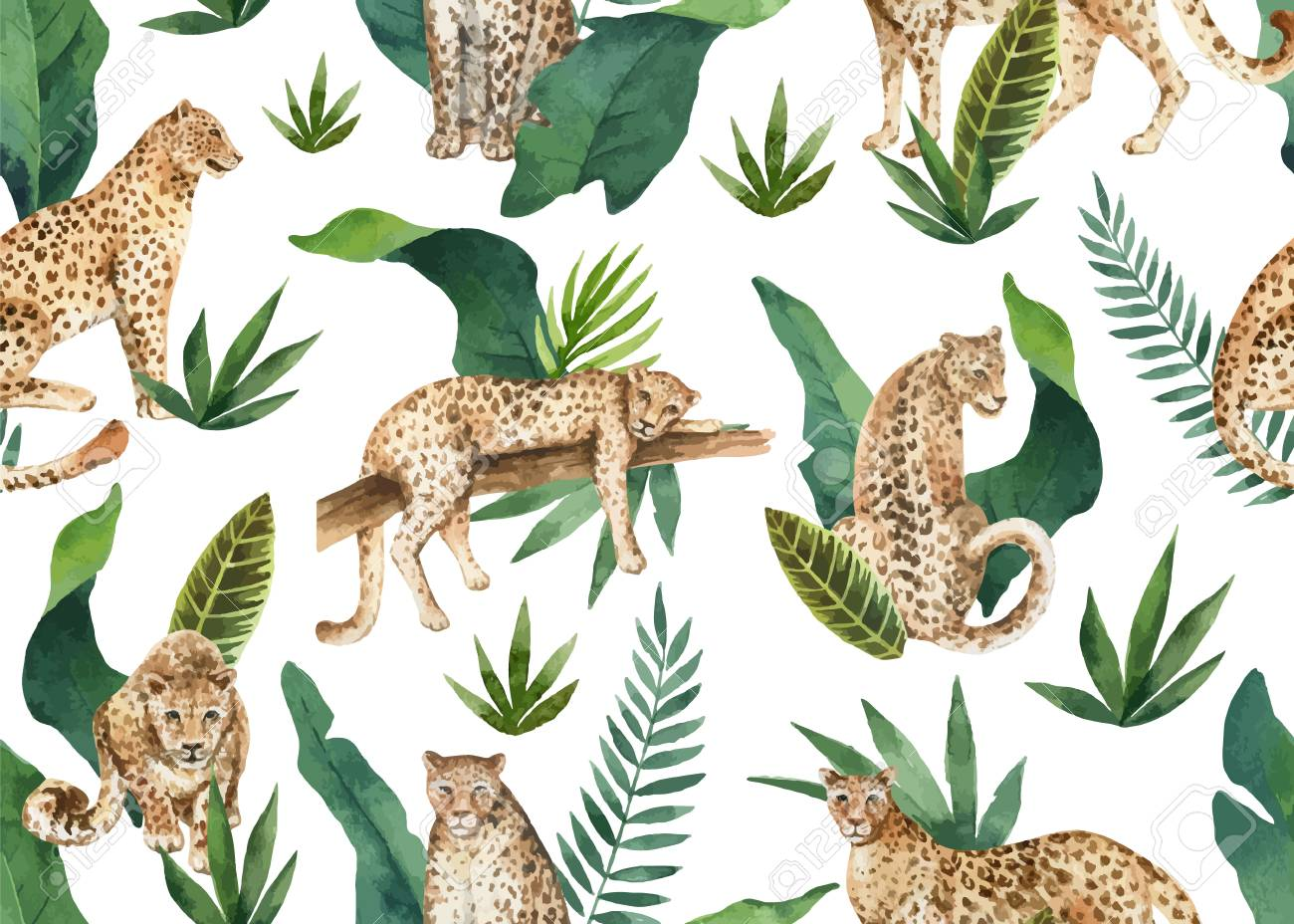 Watercolor vector seamless pattern of tropical leaves and leopards in jungle isolated on white background. Illustration for design textile, wrapping paper, postcards. Trendy style. - 116289520