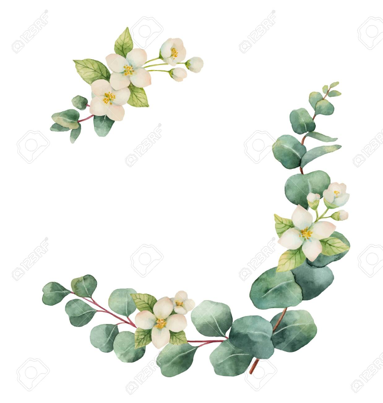 Watercolor vector wreath with silver dollar eucalyptus leaves and flowers. illustration for cards, wedding invitation,save the date or greeting design. Summer flowers with space for your text. - 123633249