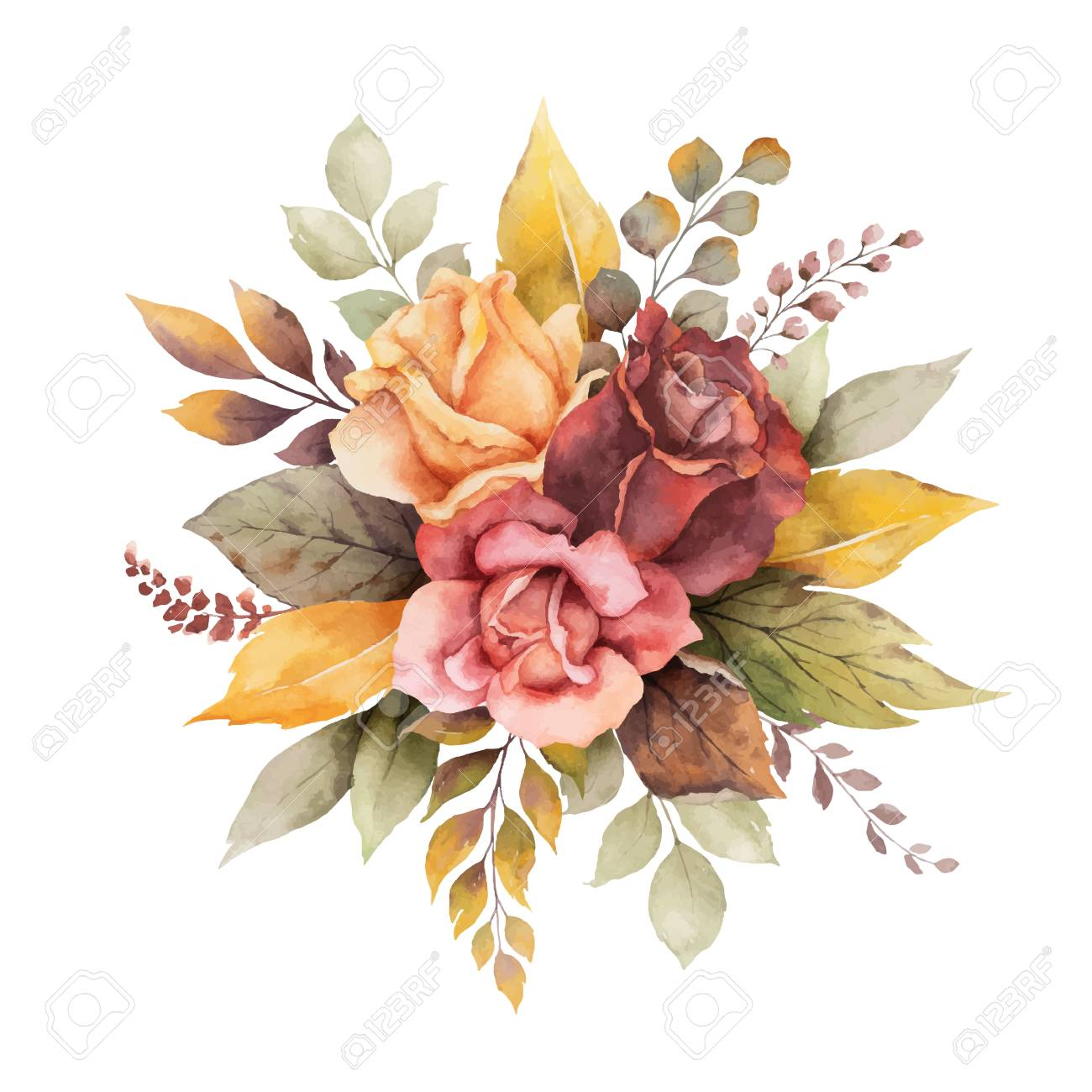 Watercolor vector autumn arrangement with roses and leaves isolated on white background. Botanic composition for greeting cards, wedding invitations, floral poster and decorations. - 130047533