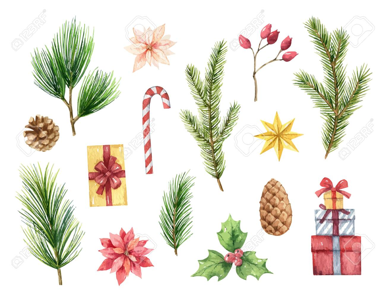 Watercolor vector Christmas set with fir branches, cones nd gifts. Illustration for your holiday design isolated on a white background. - 130047684
