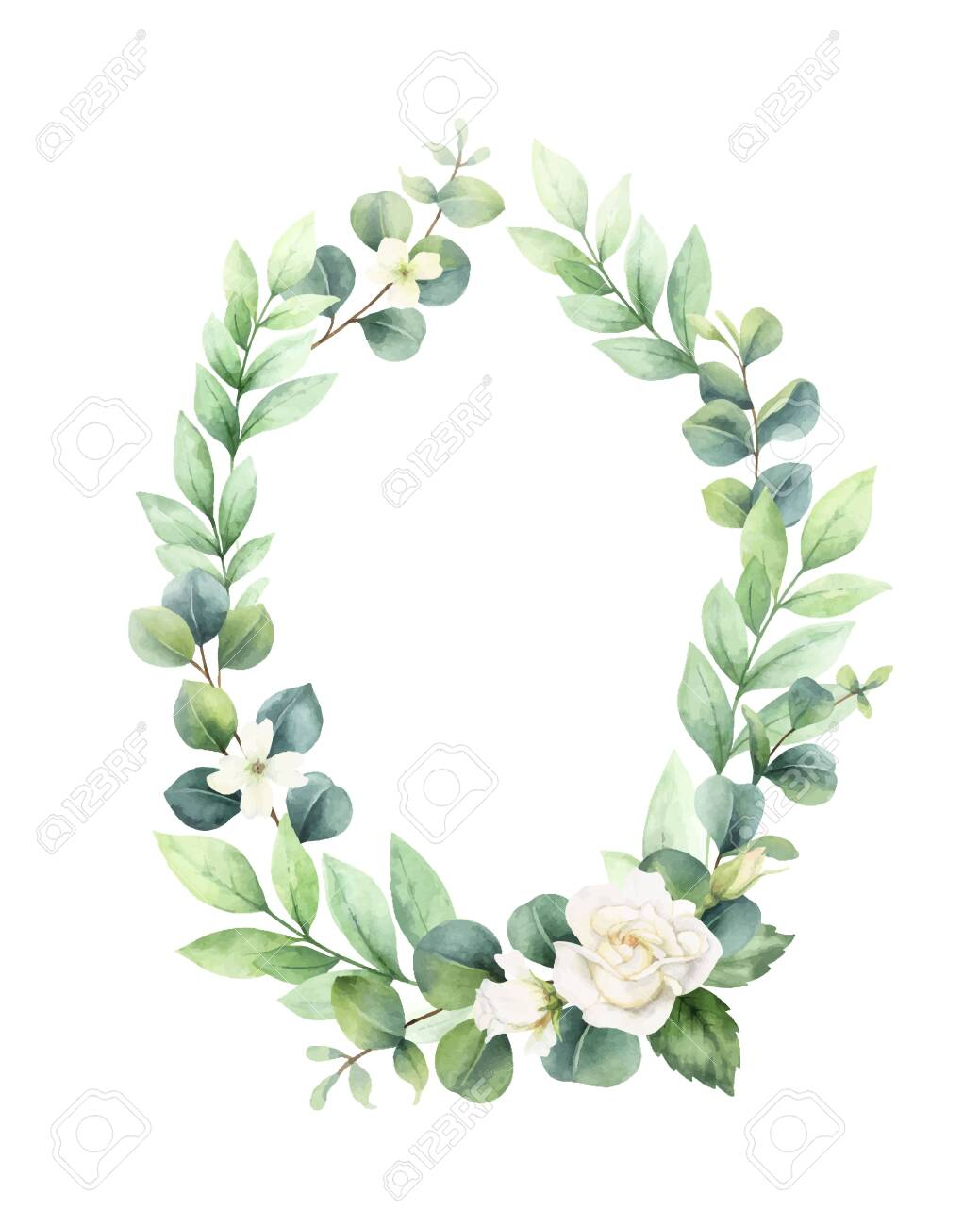 Watercolor vector hand painted wreath with green eucalyptus leaves and roses. - 147676486