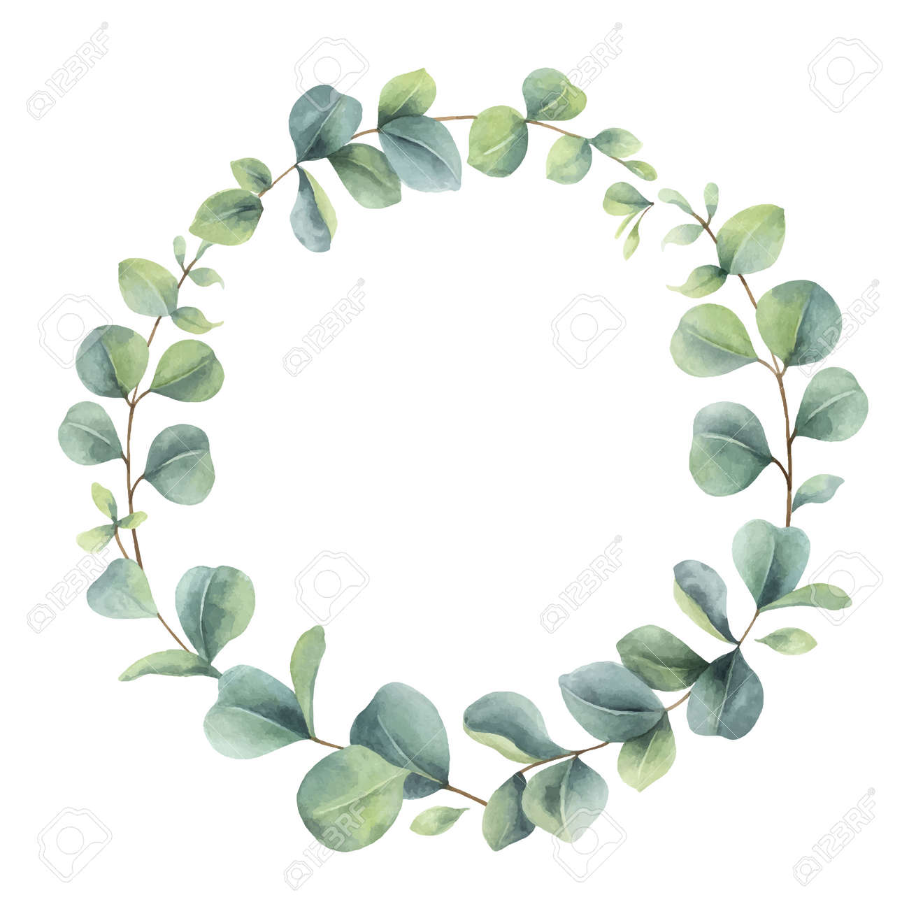 Watercolor vector wreath with eucalyptus branches and leaves. - 169399002