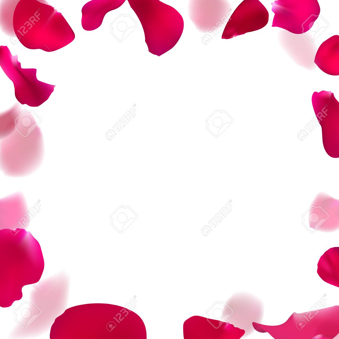 Template Wedding Invitation With Rose Petals Royalty Free Cliparts
