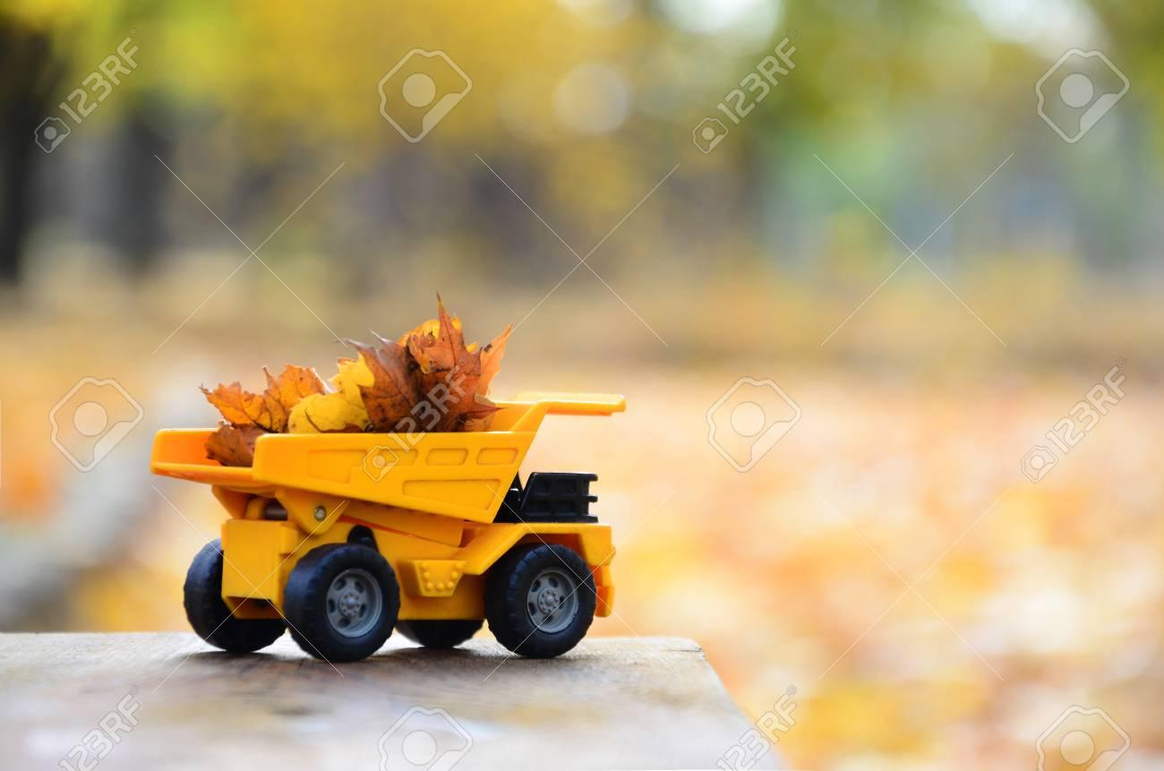 Un Camion JaunesLa Parc Est Se Automne Voiture D'un Jaune Trouve Jouet Sur Une De Chargé Tombées Petit Fond Bois Feuilles Surface En FclJK1