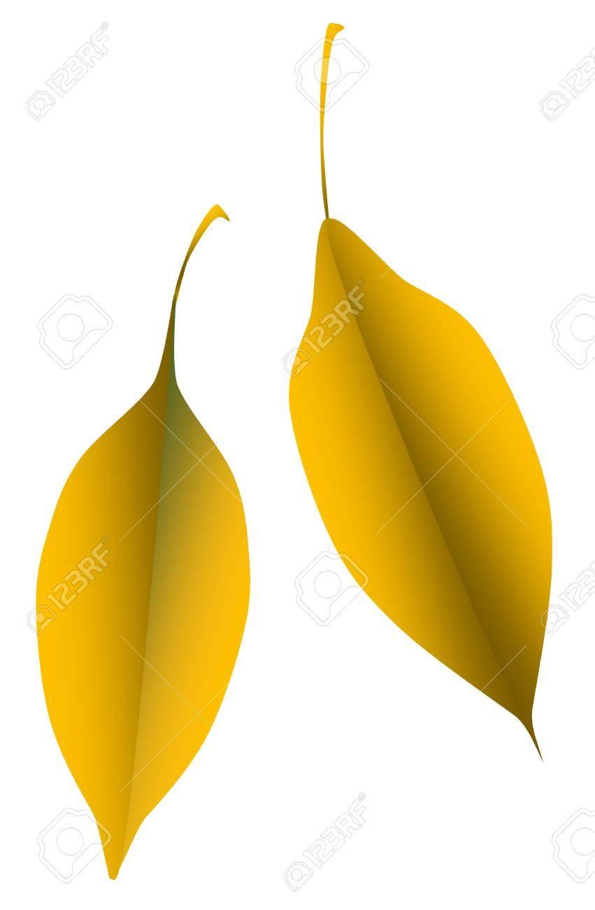 2 orange leaves leaf Stock Vector - 24902289