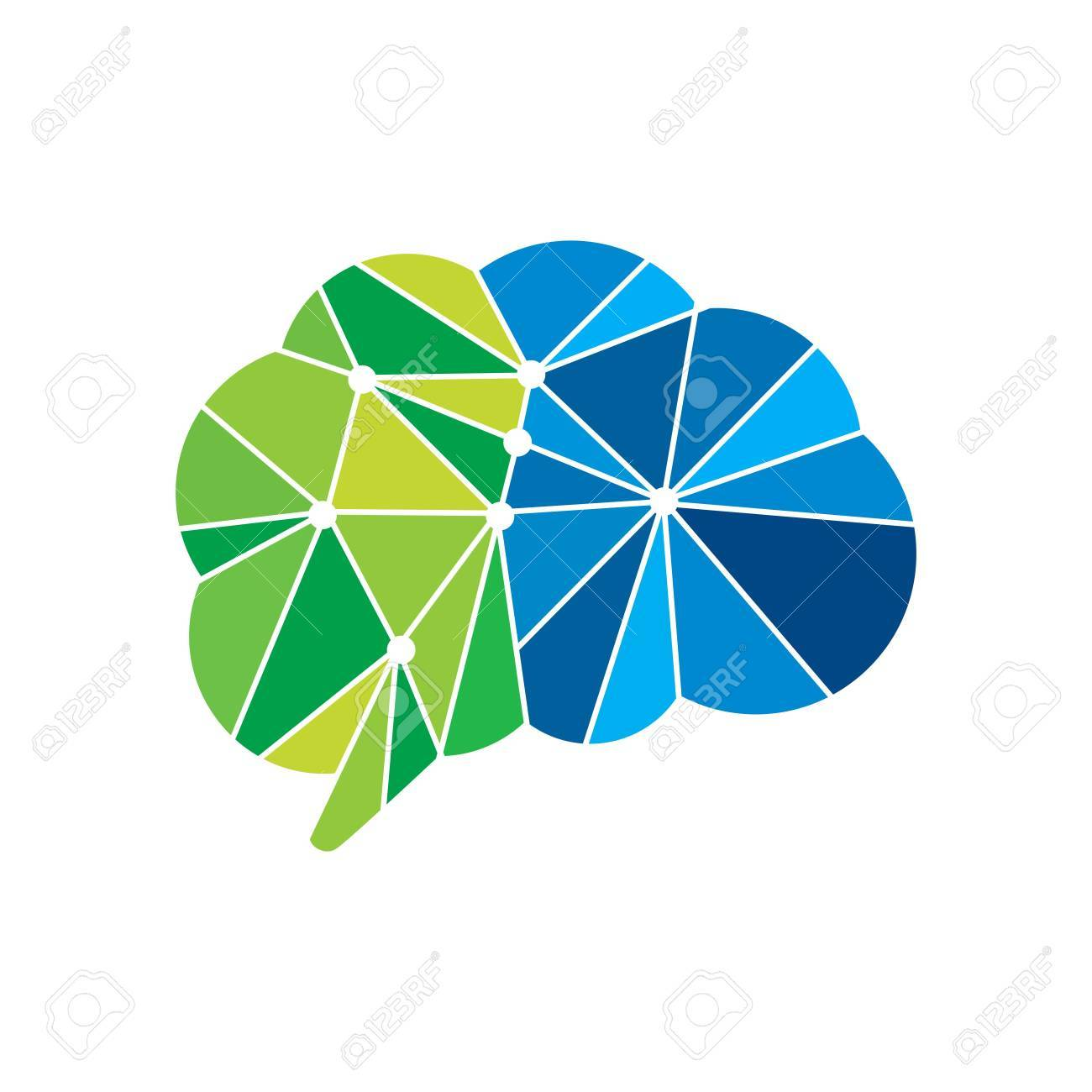 Brain Template   Brain Template Stock Photo Picture And Royalty Free Image Image