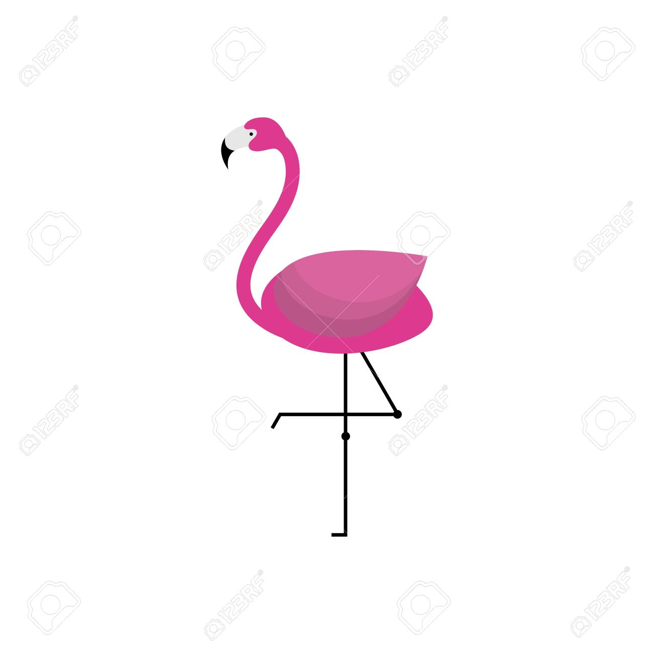 Flamingo Template Stock Photo, Picture And Royalty Free Image. Image ...
