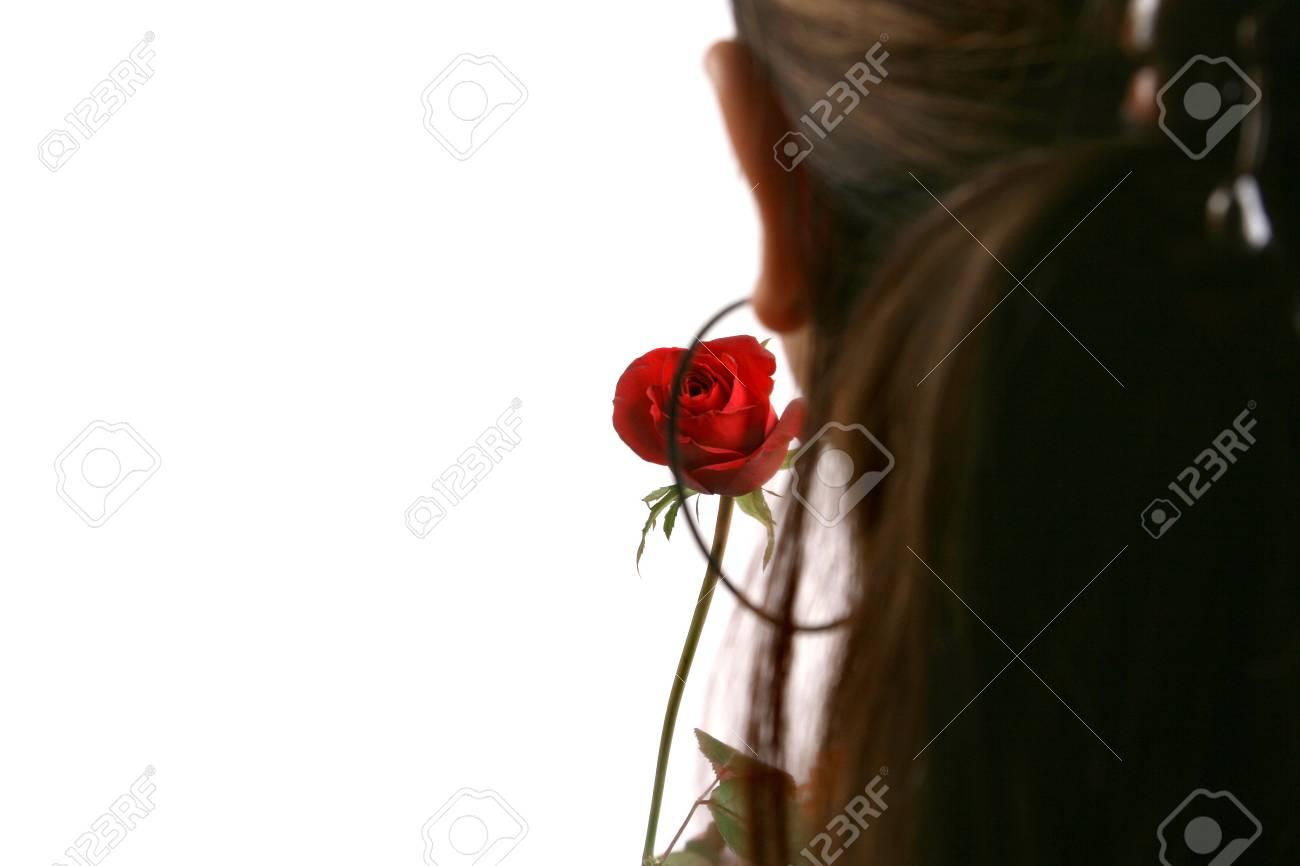 valentine's day Stock Photo - 5503286