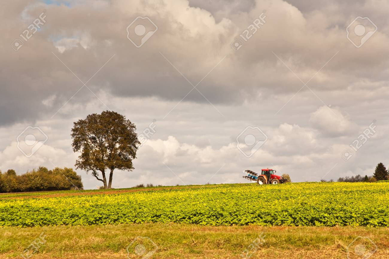 tractor with plow on field in bad weather Stock Photo - 9888148