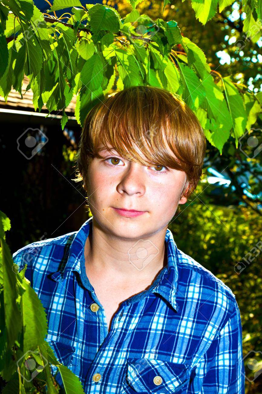portrait of cute boy in leaves of the tree Stock Photo - 10738126