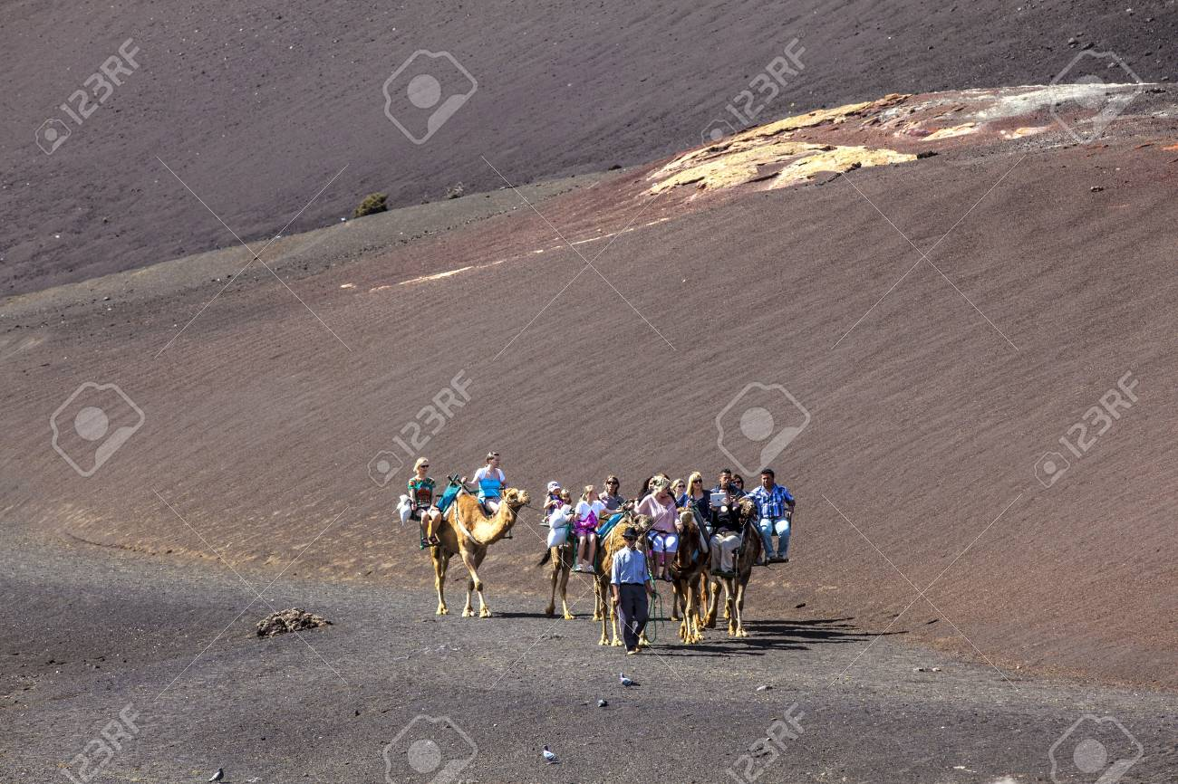 TIMANFAYA NATIONAL PARK, LANZAROTE, SPAIN - APRIL 5: Tourists ride on camels being guided by local people through the famous Timanfaya National Park in April 05,2012. Stock Photo - 13162151