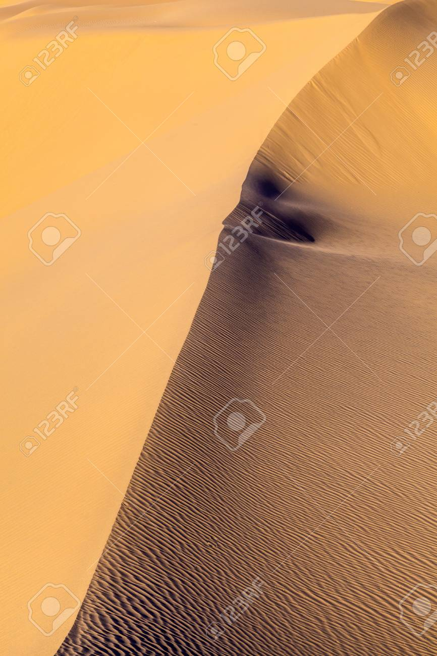 beautiful sand dune in sunrise in the desert Stock Photo - 14941234
