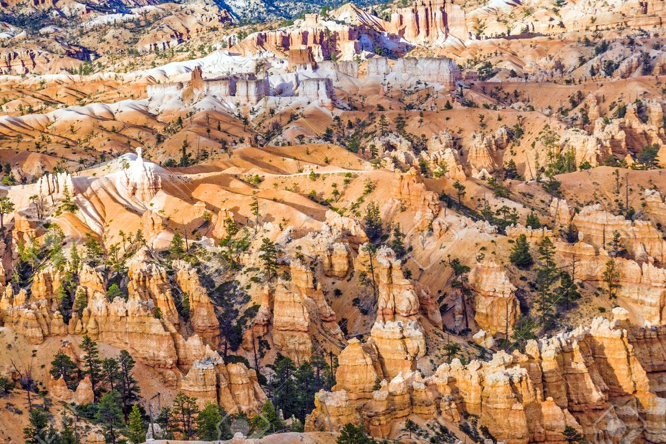 beautiful landscape in Bryce Canyon with magnificent Stone formation like Amphitheater, temples, figures Stock Photo - 21862442
