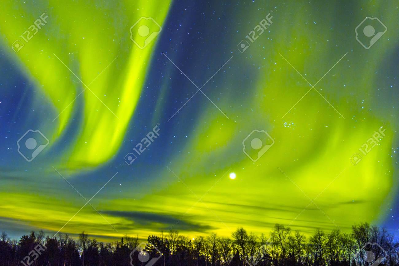 Northern Lights (Aurora borealis) over snowscape. - 34551493