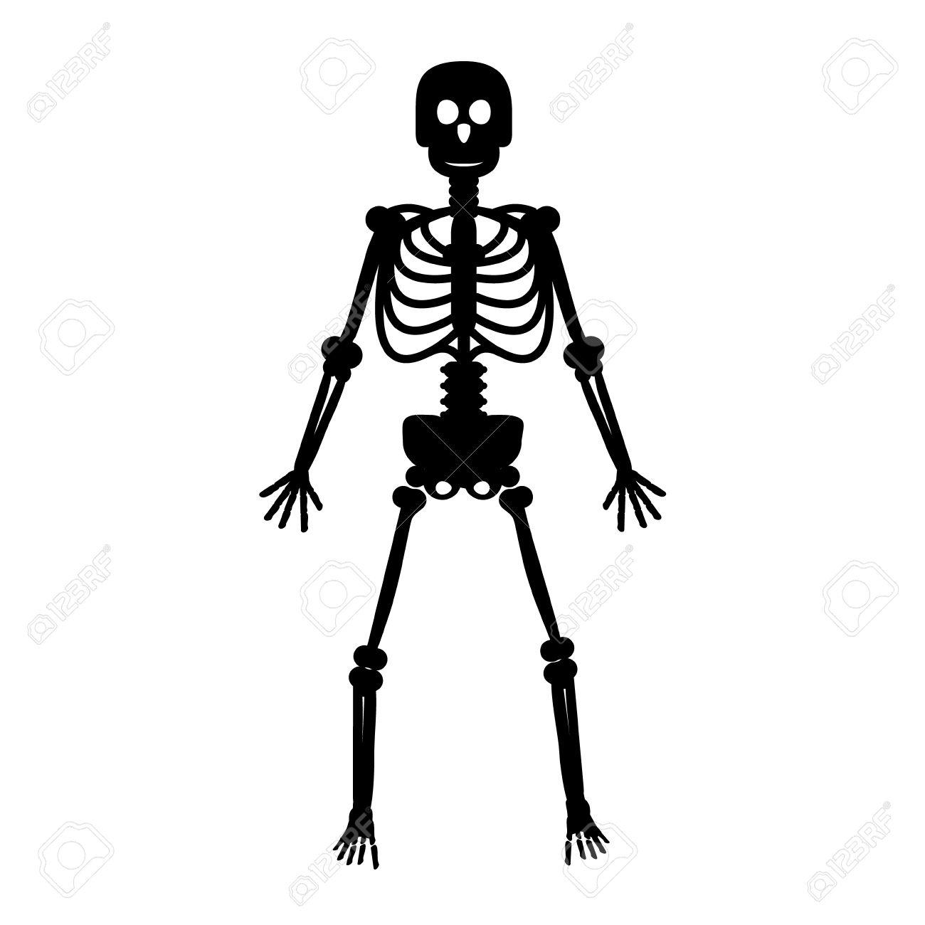 skeleton black human bones on white background vector royalty free rh 123rf com skeleton vector png skeleton vector art free