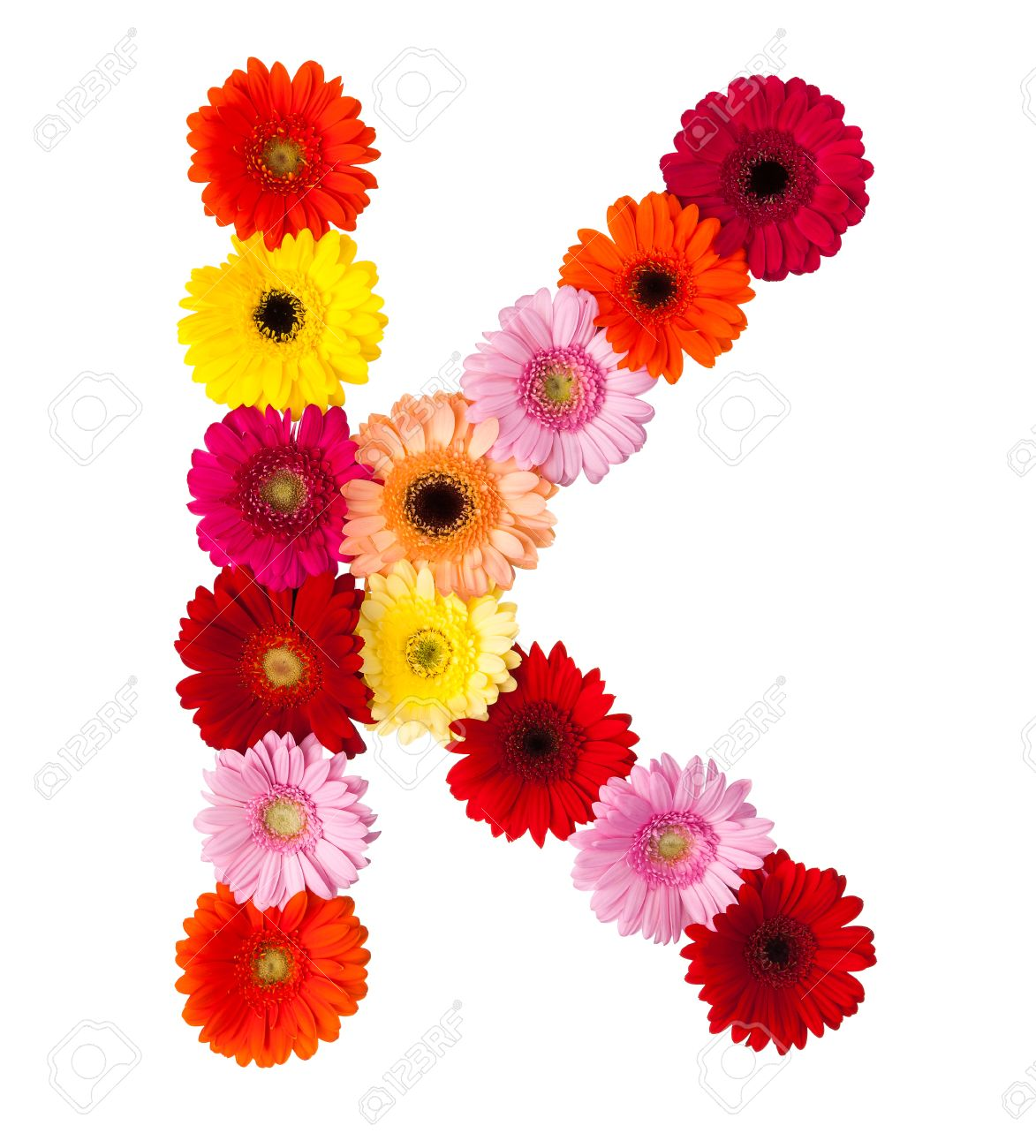 What is a flower that starts with the letter