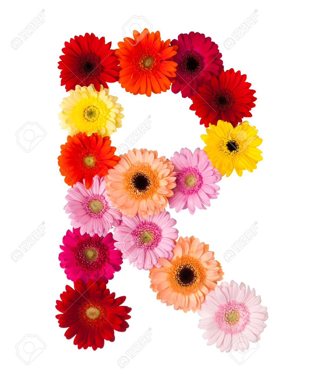 Flower letter r on white background made of gerbera flowers stock flower letter r on white background made of gerbera flowers stock photo 28601274 altavistaventures Choice Image