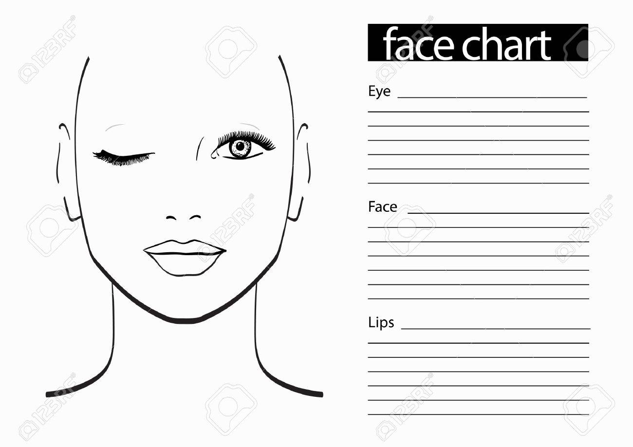 Face chart makeup artist blank template vector illustration stock face chart makeup artist blank template vector illustration stock illustration 61056415 maxwellsz