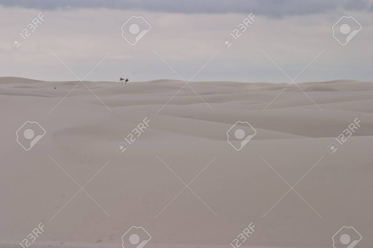 White Sands National Monument is a U.S. National Monument located about 25 km (15 miles) southwest of Alamogordo in western Otero County and northeastern Dona Ana County in the state of New Mexico Stock Photo - 4667617