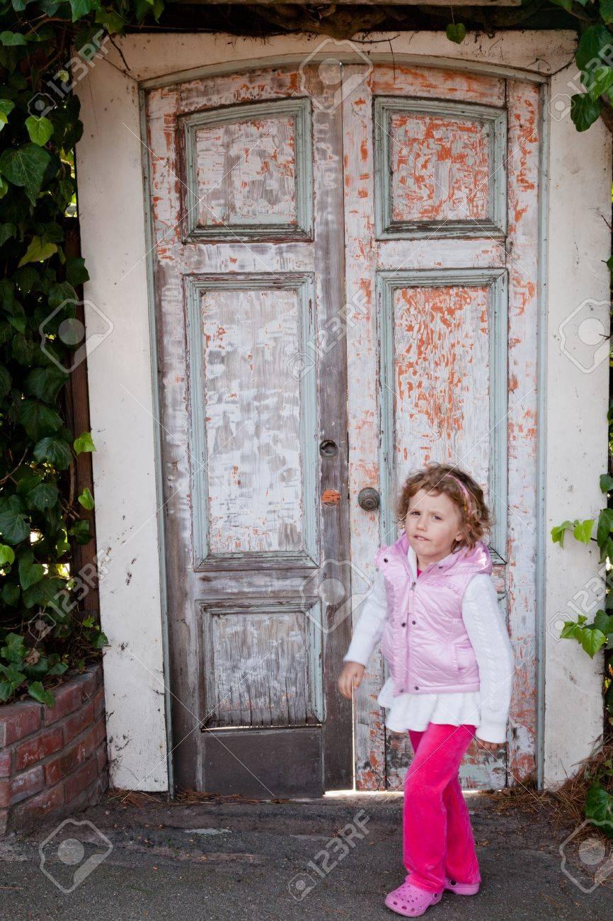 Old wooden door to a secret garden. Stock Photo - 17803375