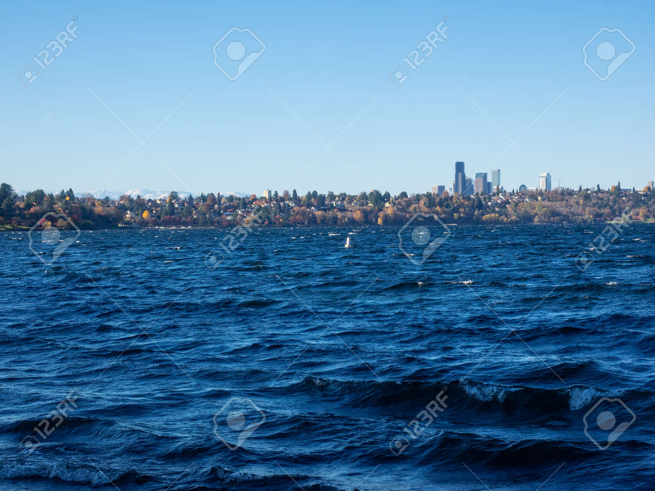 Seward Park is a municipal park in Seattle, Washington, United States. Located in the city neighborhood of the same name, it covers 300 acres (120 ha; 0.47 sq mi). - 162918730