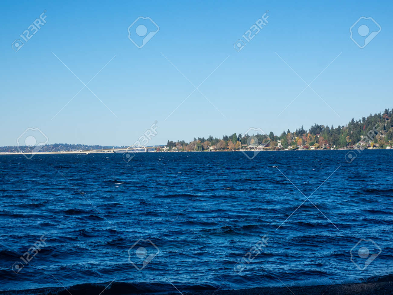 Seward Park is a municipal park in Seattle, Washington, United States. Located in the city neighborhood of the same name, it covers 300 acres (120 ha; 0.47 sq mi). The park occupies all of Bailey Peninsula, a forested peninsula that juts into Lake Washington. - 166628474