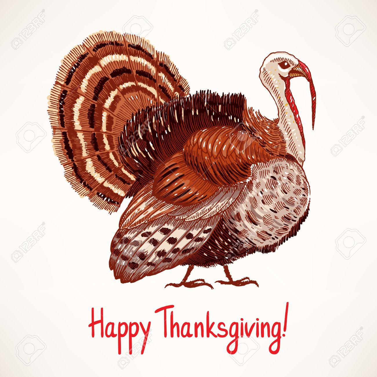cute hand drawn turkey sketch card for thanksgiving day 2
