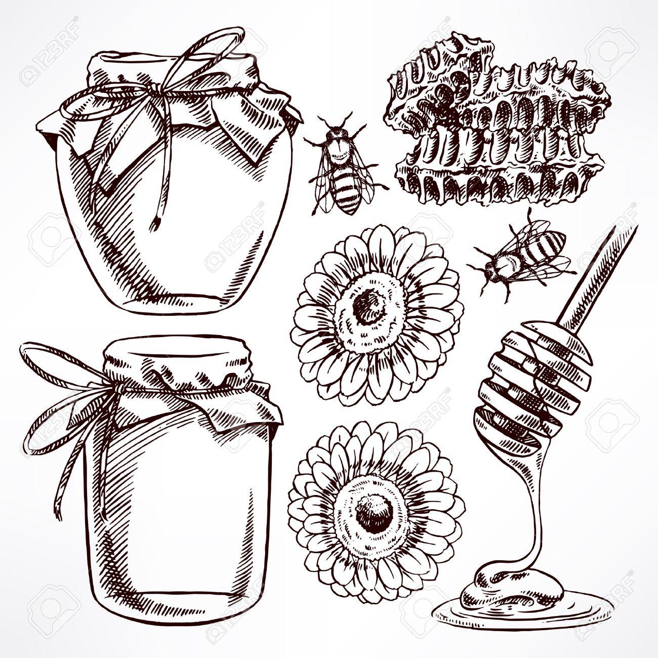sketch honey set. jars of honey, bees, honeycomb. hand-drawn illustration - 39894178