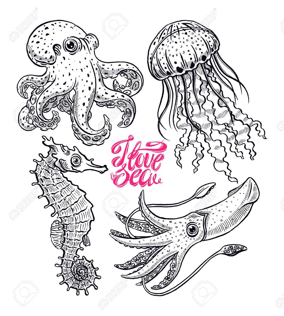 Increíble Criaturas Submarinas Del Mar Para Colorear Festooning ...