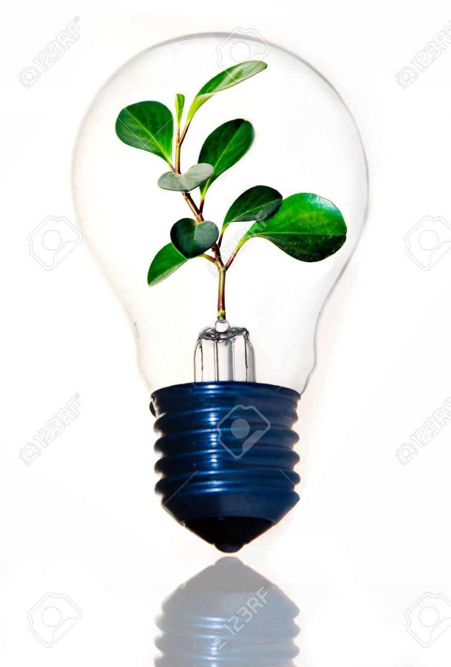 Clean energy Stock Photo - 4126076