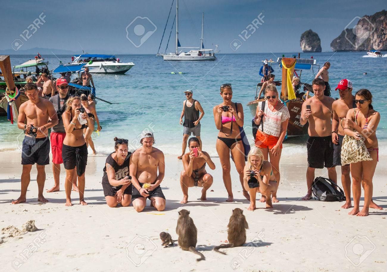 Ko Phi Phi Tailandia 1 De Febrero De 2014 Turistas Alimentando Monos Atracción Principal De Las Islas Phi Phi Monkey Bay Ao Ling Tailandia Fotos Retratos Imágenes Y Fotografía De Archivo Libres