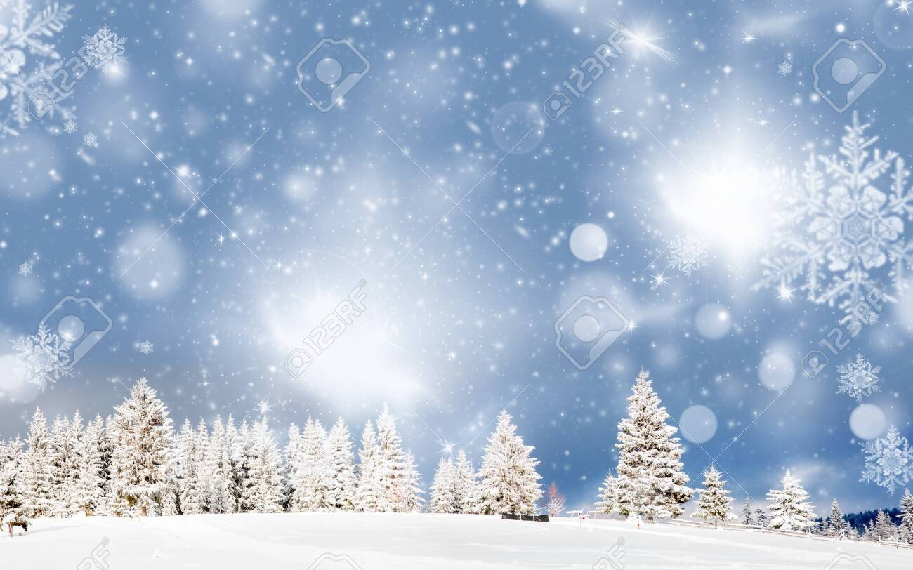 amazing Christmas background with snowy firs winter landscape - 133178721