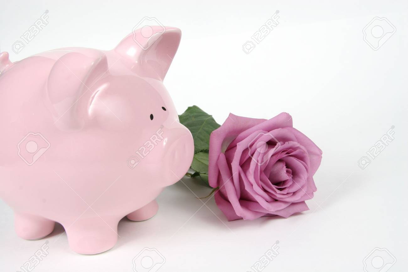Pink Piggy Bank and Pink Rose on isoalted on white background Stock Photo - 1230253