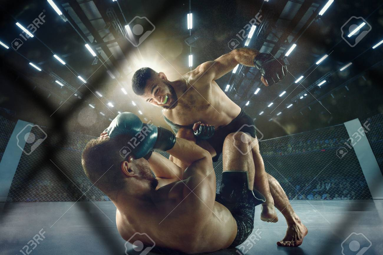 Getting trophy. Two professional fighters posing on the sport boxing ring. Couple of fit muscular caucasian athletes or boxers fighting. Sport, competition and human emotions concept. - 121834900