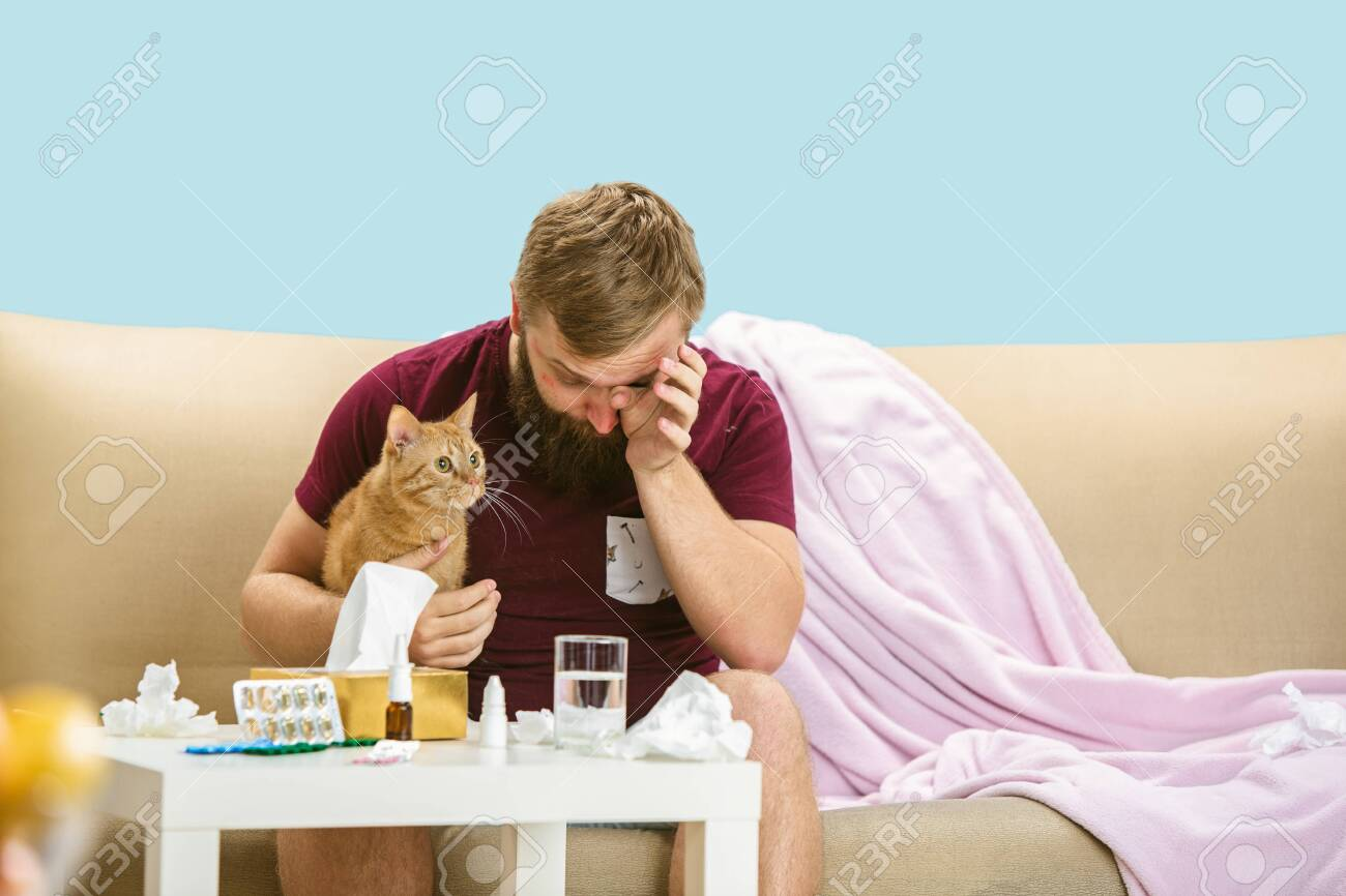 Young man suffering from allergy to cat hair. Having skin rash, itching, Sneezing in the napkin, sitting surrounded by used napkins, holding the pet. Taking medicine with no result. Healthcare concept. - 128383719